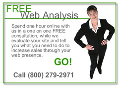 Free Web Analysis